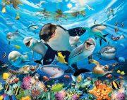 Sea Adventure Wall Mural 45279